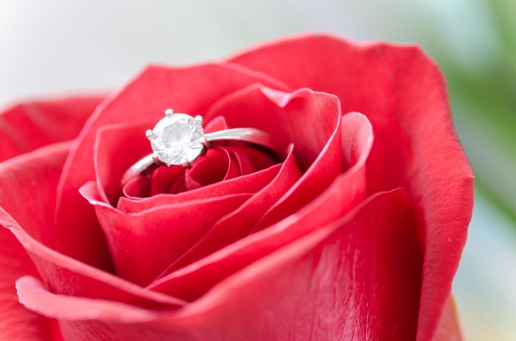 Red-Rose-Diamond-Engagement-Ring
